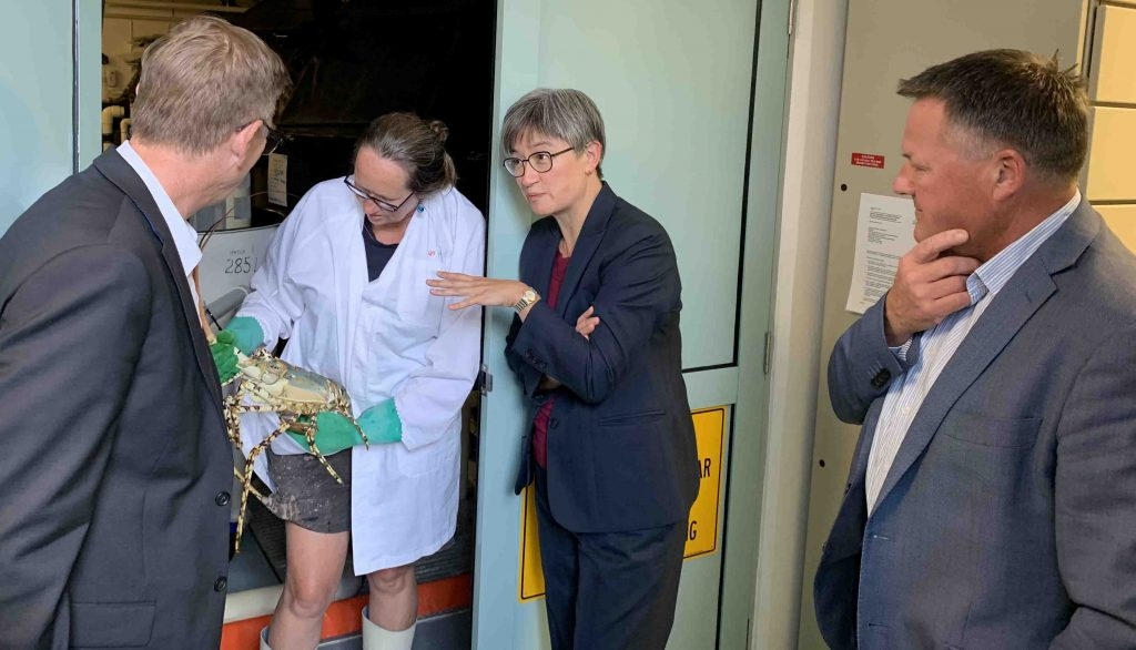 https://ornatas.com.au/wp-content/uploads/2019/03/martin-rees-ornatas-with-penny-wong-march-2019.jpg