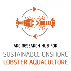 ARC Research Hub for Sustainable Onshore Lobster Aquaculture